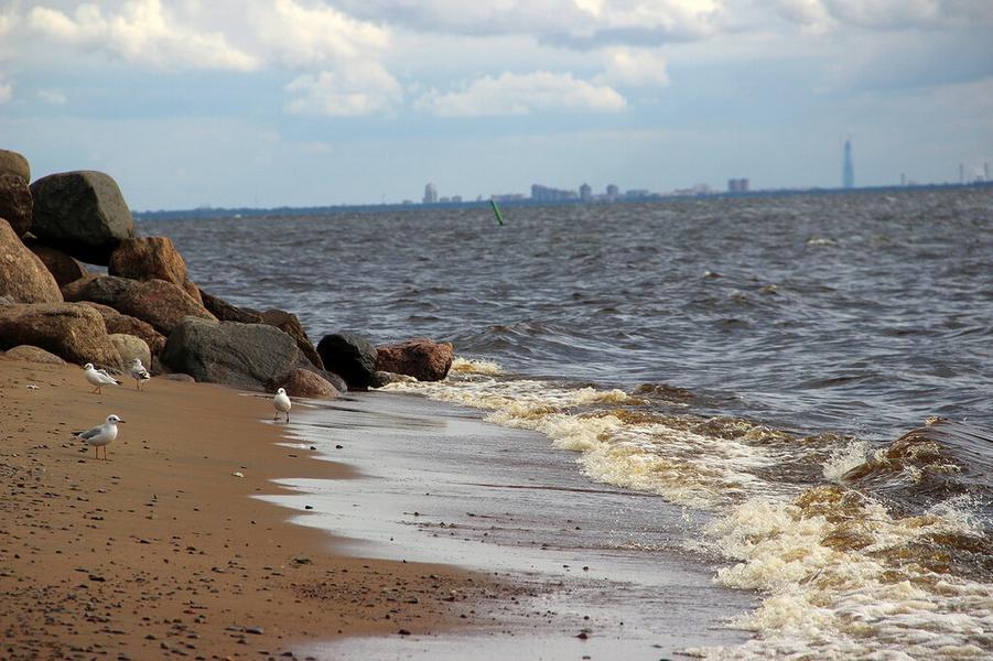 чем зеленогорск ленинградская область фото пляжей и набережной творческий домысел