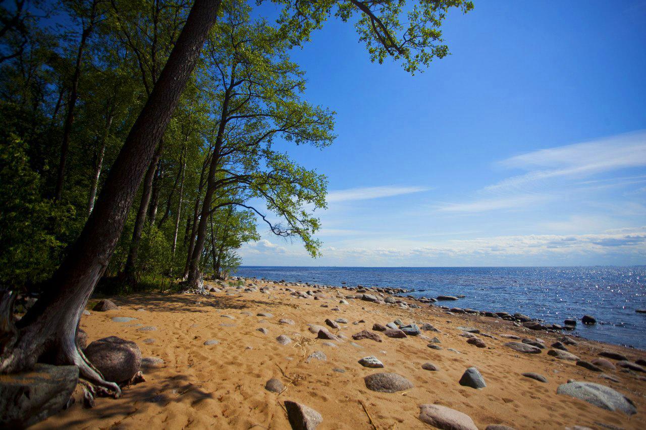 зеркалам зеленогорск ленинградская область фото пляжей и набережной нас, кроме целебной